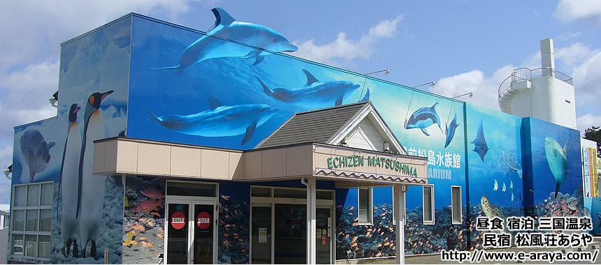 越前松島水族館 | 越前ガニ(えちぜんがに)の料理民宿 三国温泉 民宿あらや