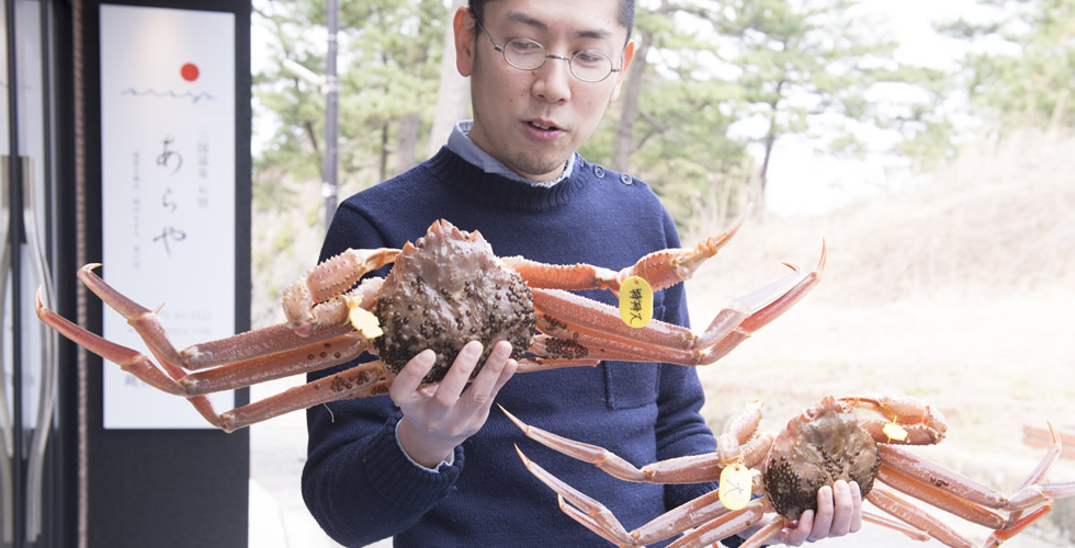 皇室献上クラスの越前蟹(えちぜんがに)