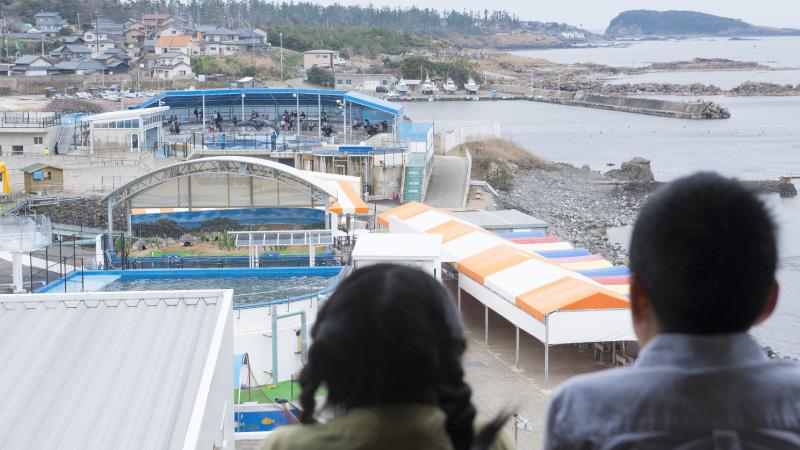 お宿あらやから見た越前松島水族館
