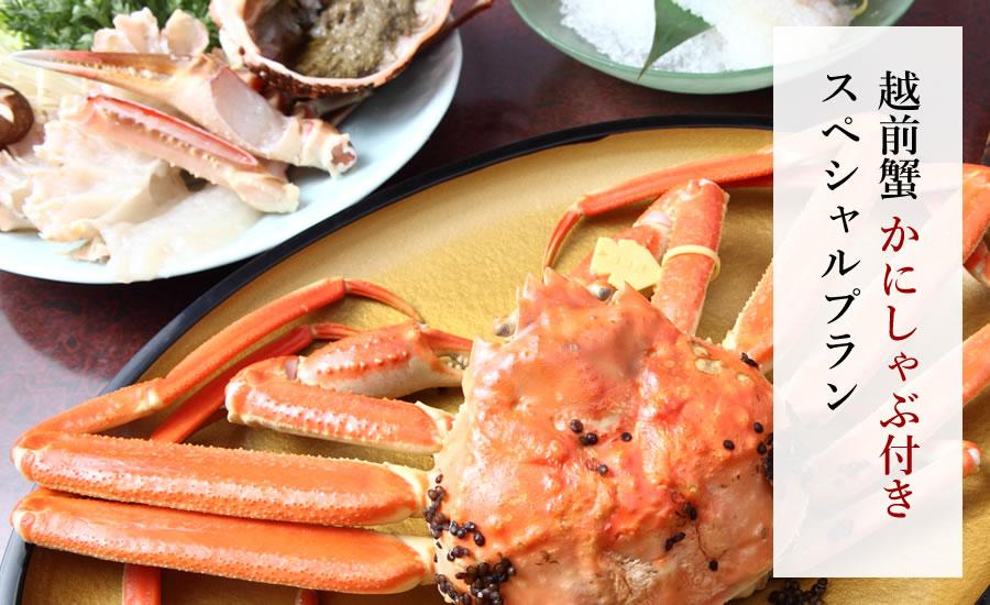【特大サイズ】越前ガニ 蟹しゃぶ付きスペシャルプラン