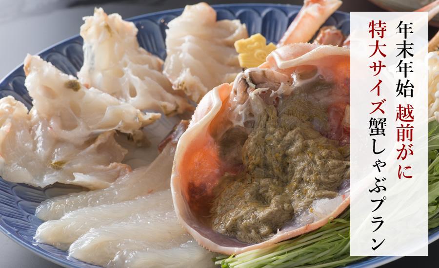【年末年始】越前ガニ 特大サイズ蟹しゃぶプラン
