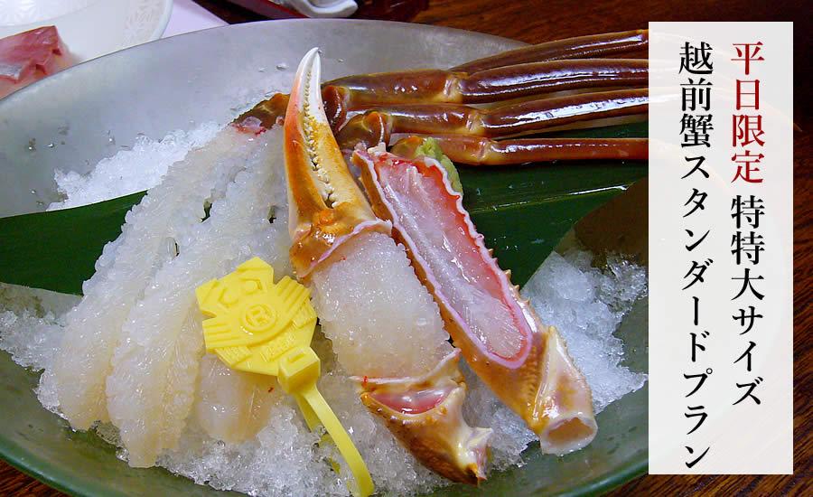 【平日限定】特特大サイズ越前蟹 スタンダードプラン